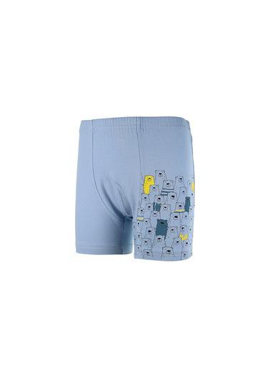 Donella Takım Ayılar Baskılı Erkek Çocuk Boxer Mavi